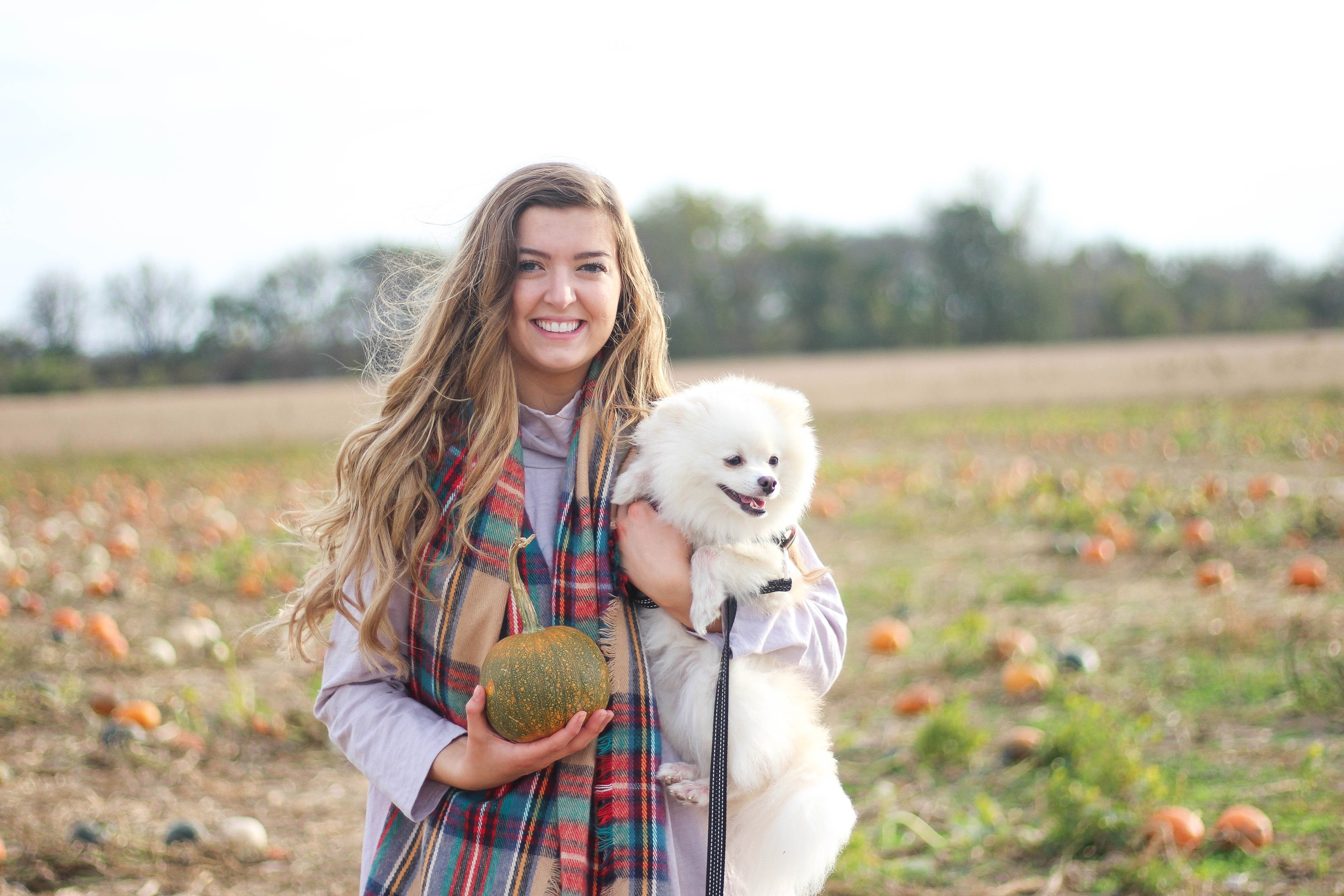 Pumpkin Patch OOTD and trying pumpkin spice foods (VIDEO) on daily dose of charm by lauren lindmark