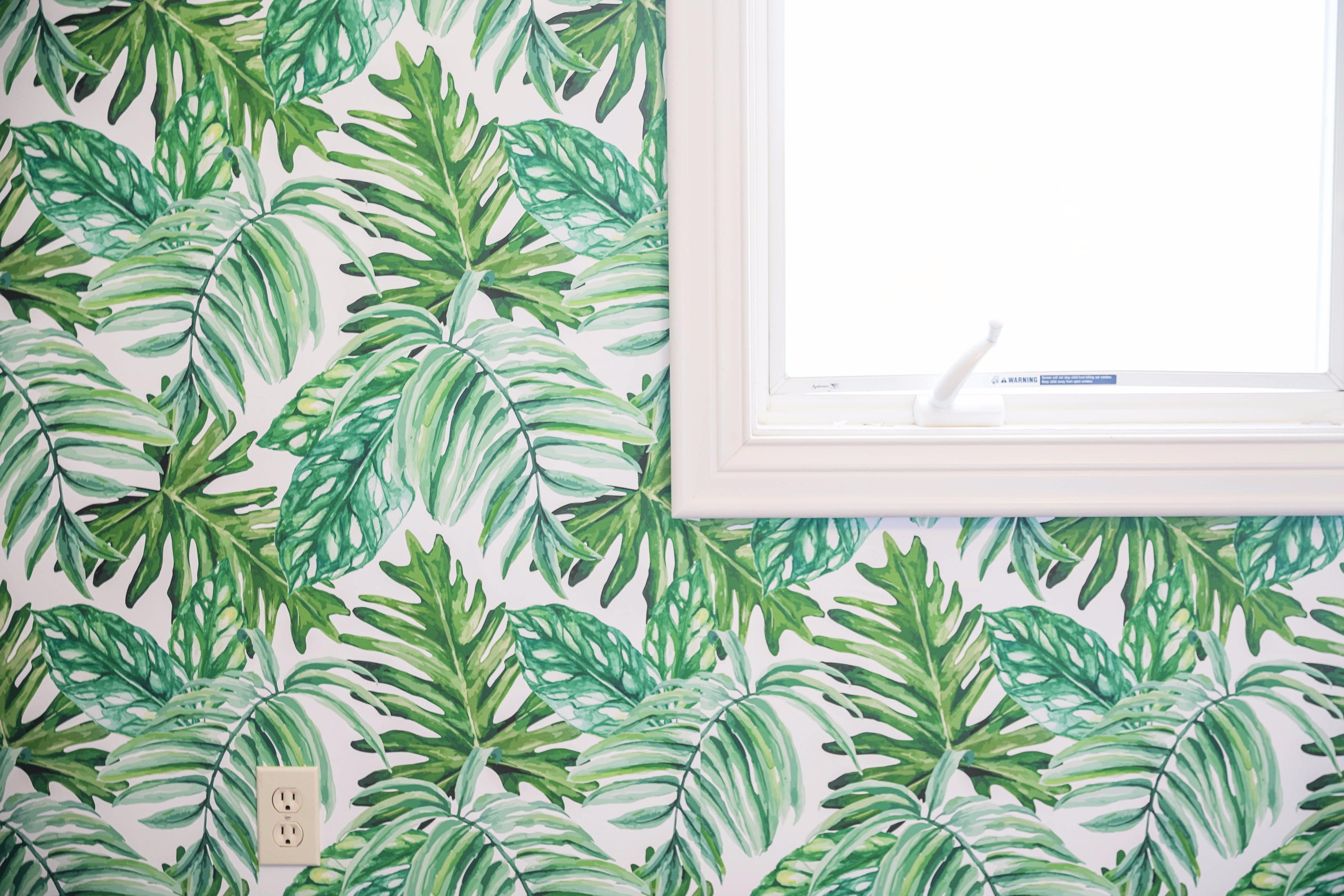 100 Renters Wallpaper Damsel Self Adhesive