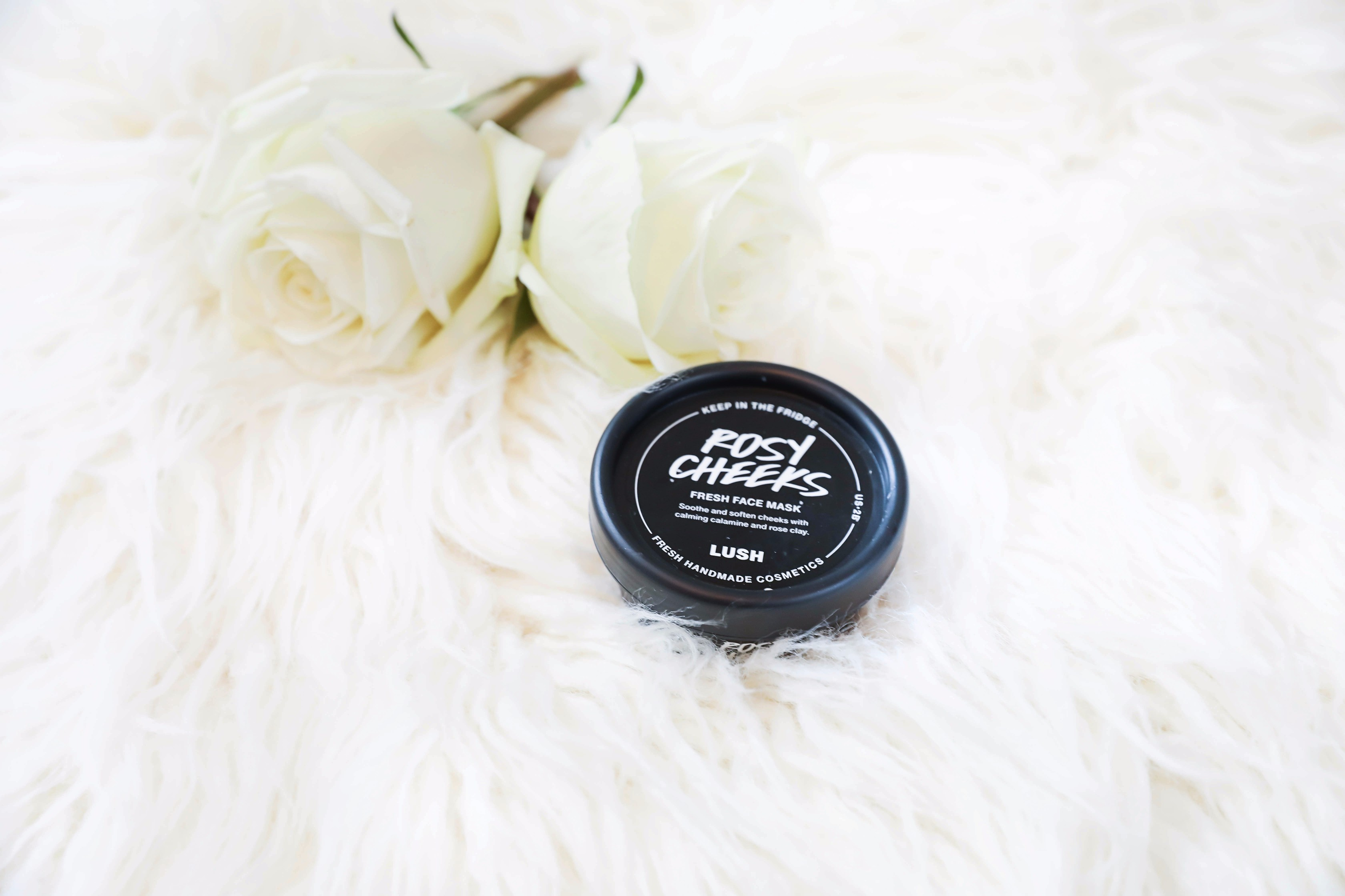 October beauty favorites! LUSH face mask! Beauty flatlay! Details on daily dose of charm by lauren lindmark