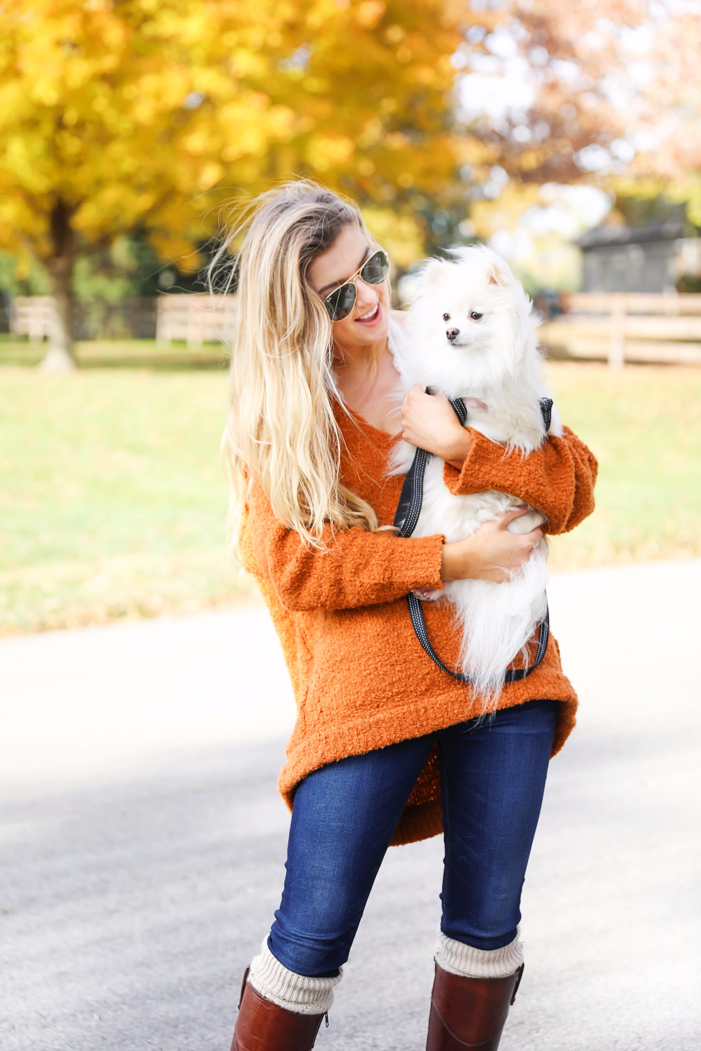 Pomeranian in the fall! Burnt orange soft free people sweater paired with frye boots and cable knit socks. Fall fashion inspiration! Get details on daily dose of charm fashion blog lauren lindmark
