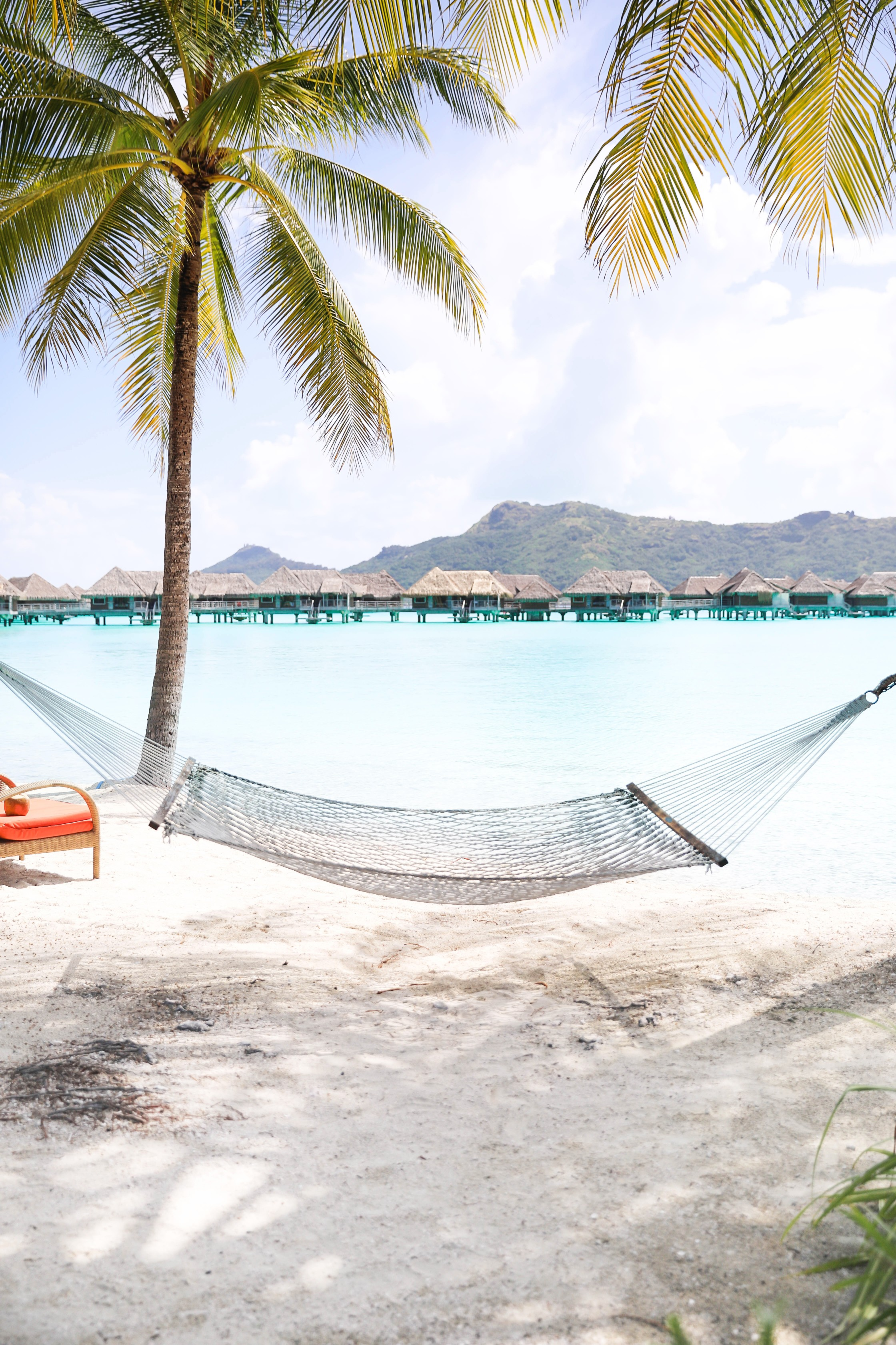 Bora Bora beach! Beautiful palm tree on beach with turquoise blue water! Hammock on the beach! Details on travel blog and fashion blog daily dose of charm by lauren lindmark