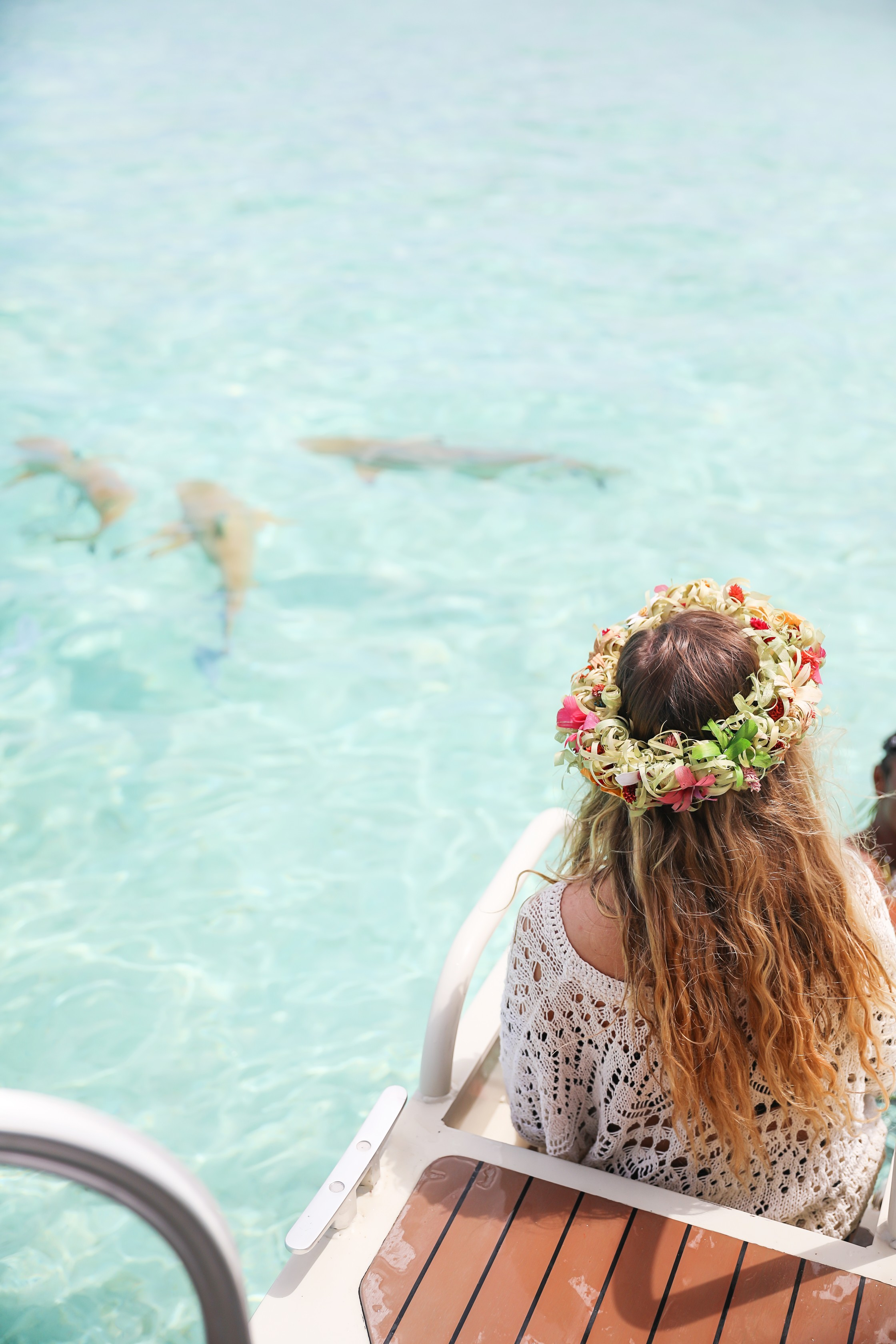 Swimming with sharks in Bora Bora, French Polynesia! I wore the prettiest Bora Bora flower crown by the ocean! The water was so clear and blue! Details on travel blog daily dose of charm by travel blogger and fashion blogger lauren lindmark