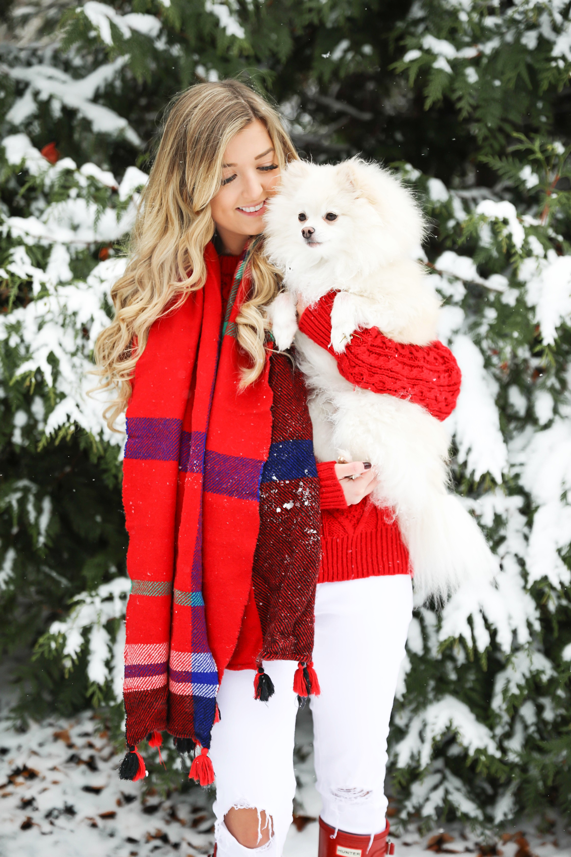 Christmas card photos in the snow! I took my holiday card photos with my cute little white pomeranian. I love when people do their holiday pictures with their dog! This is such a cute winter outfit idea for the holidays! Details on fashion blog daily dose of charm by lauren lindmark