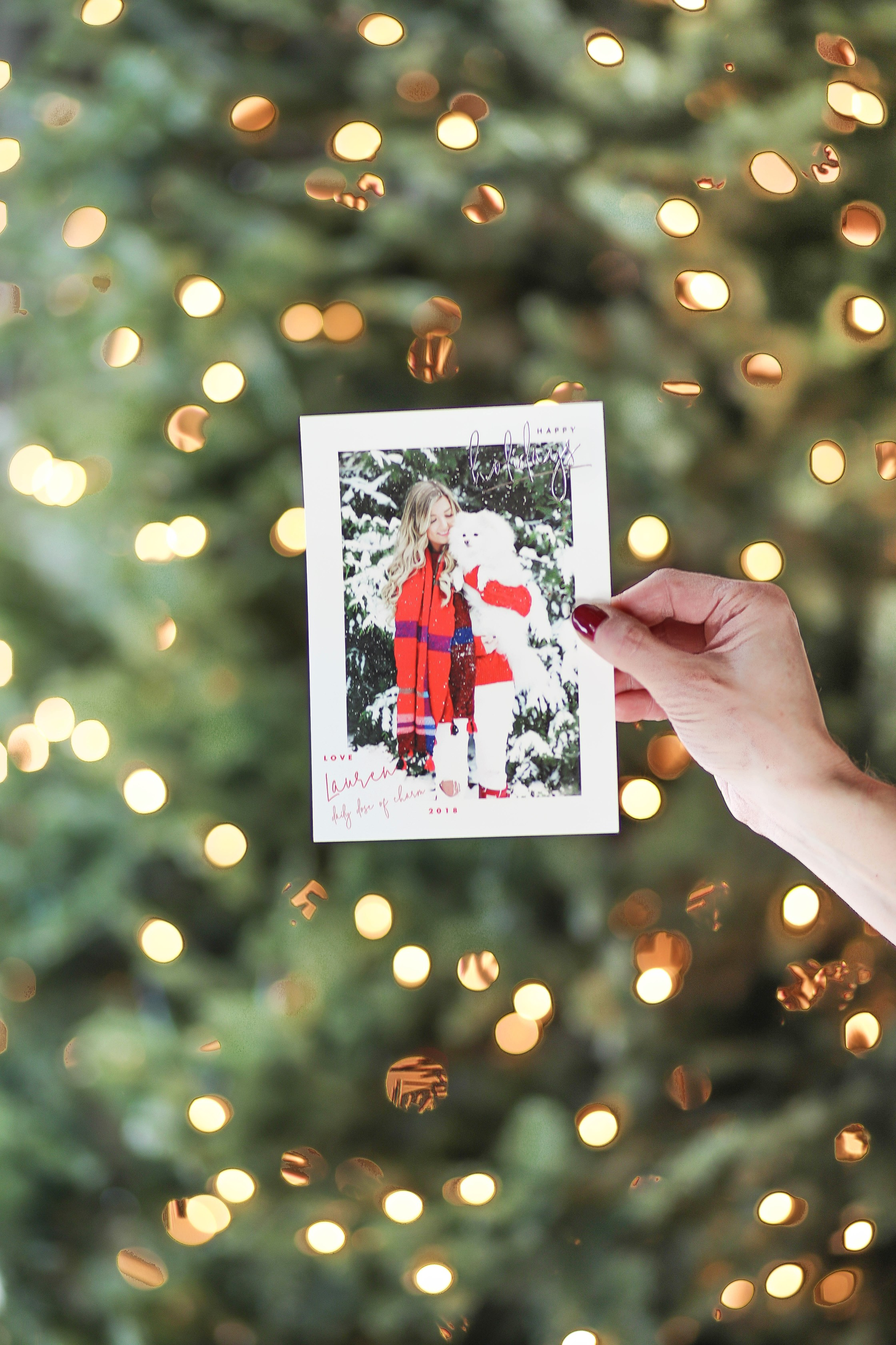 Christmas photos from Minted! The cutest holiday photos with my white pomeranian and German shephard! Dog holiday pictures are so cute! I am wearing this cute cable knit red sweater and beanie. All details on fashion blog daily dose of charm by lauren lindmark