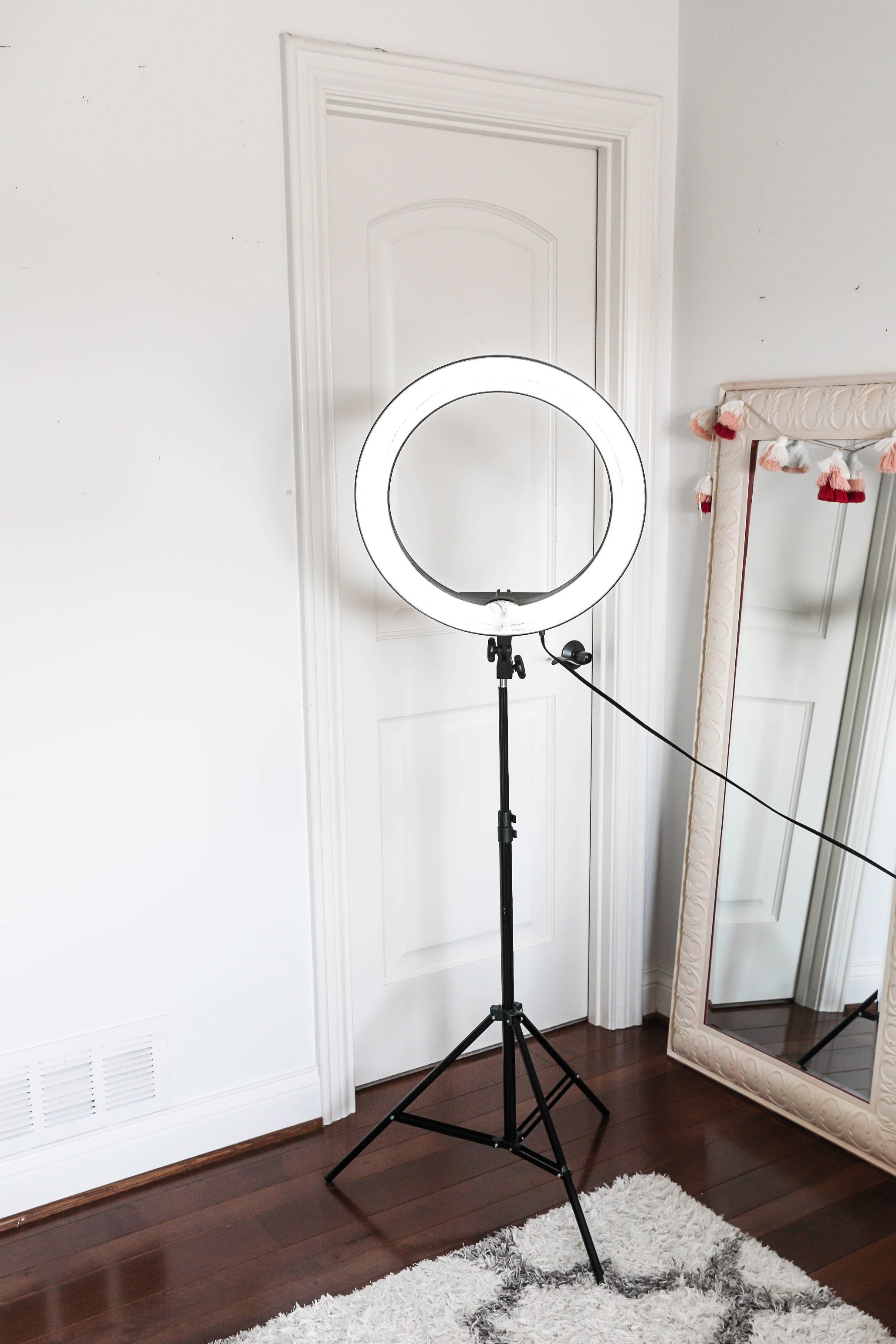 Amazon haul life hacks ringlight lighting kit lifestyle fashion blog daily dose of charm lauren lindmark